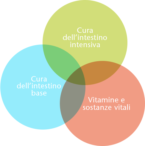 Cura dell'intestino base